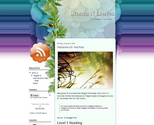 Stones N Leaves