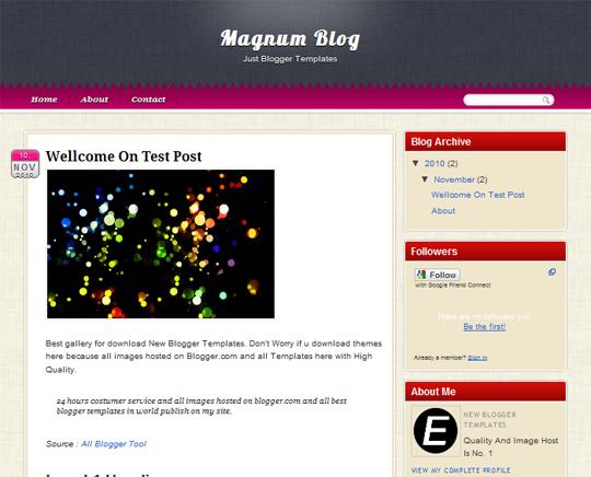 Magnum Blog
