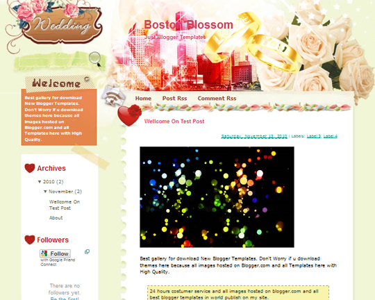 Boston Blossom