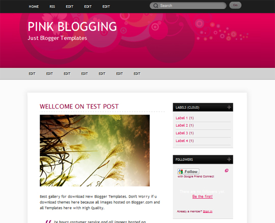 Pink Blogging