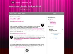 Meta Morphosis StripedPink