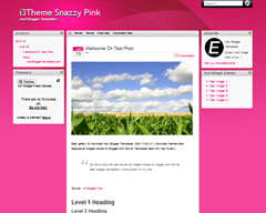 i3Theme Snazzy Pink