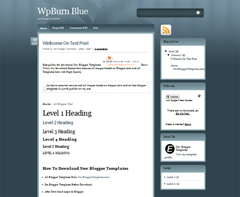 WpBurn