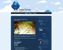 Tweethints