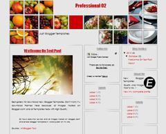 Professional 02